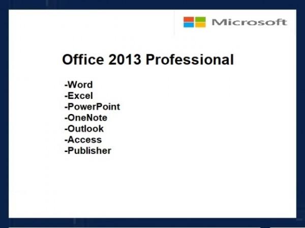 Professional 2013